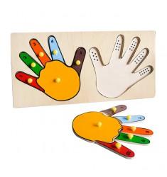 Руки (Пальцы)